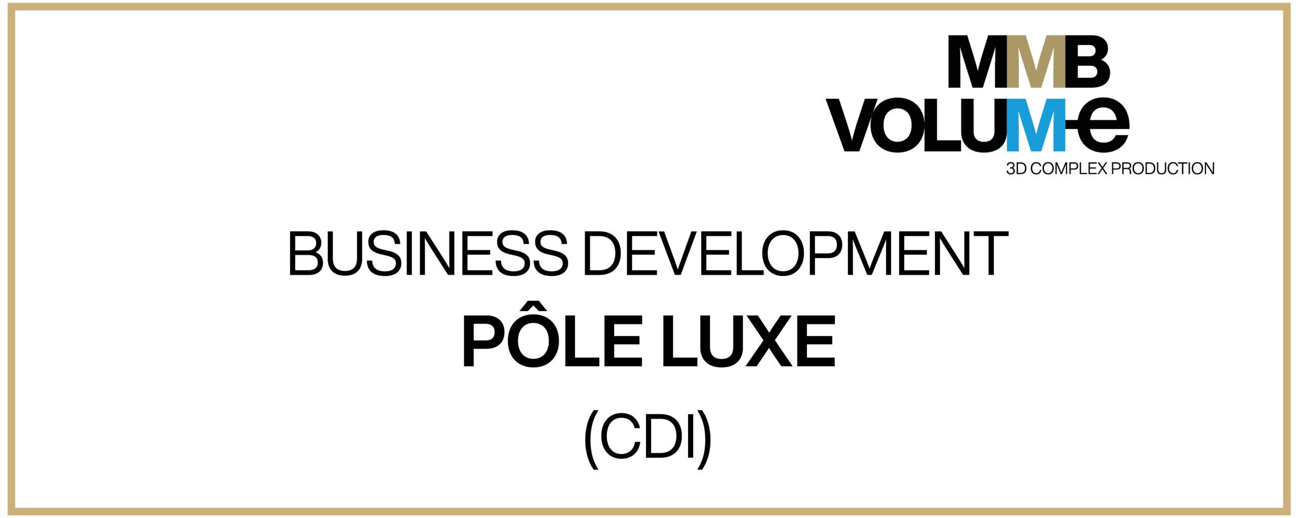 Offre business development luxe